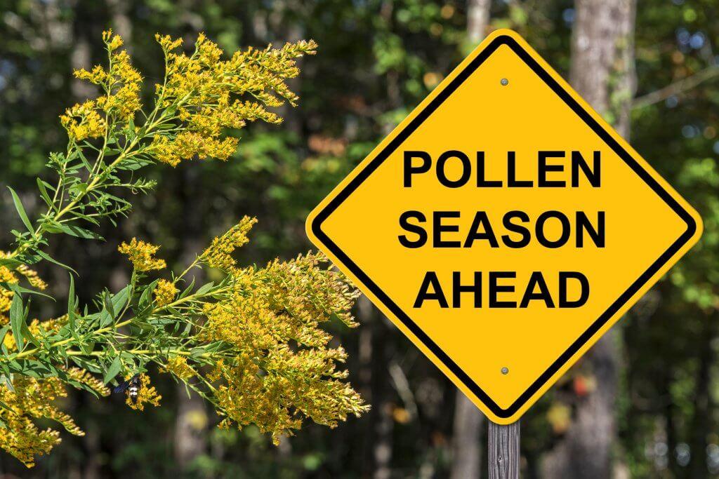 Polllen Season Ahead Warning